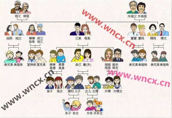 亲戚关系图 - 亲戚关系称呼 - 中国人亲戚关系图表 - 亲戚关系表